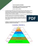 342023388-Tarea2-Rosa.docx