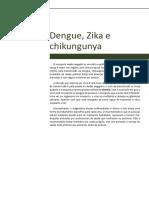Texto Base Dengue, Zika e Chikungunya