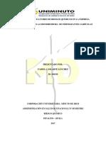 Proyecto Riesgo Quimico Correccion