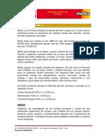 EIV MINKA(Exp. Original).pdf