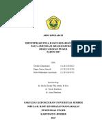 Miniriset KIPI IKM Puger New