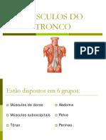 msculosdotronco