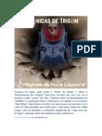 Crônicas de Trigôn - Páginas de Pura Loucura RESUMO.pdf