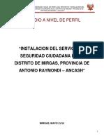 236174165-Proyecto-Seguridad-Ciudadana-Mirgas-docx.docx