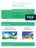 Estrategias de La Sustentabilidd