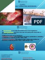 Clase 2 Estructura Bacteriana [Autoguardado]