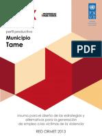 Perfil Productivo Municipio Tame