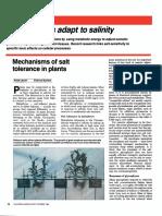 Mechanisms of Salt