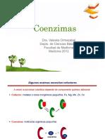 coenzimas-120519204015-phpapp01.pdf