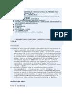 biomecanica-postural.pdf