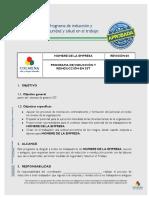 Programa-de-induccion-y-reinduccion-en-SST.docx