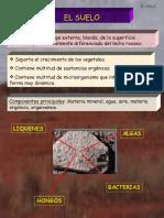 diapositivasdelsuelo-100105095718-phpapp01