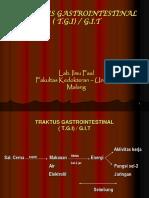 Digestivus System