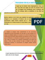 CICLO-DEL-NITROGENO.pptx