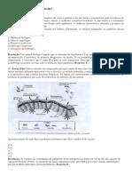 SIMULADO DE BIOLOGIA ENEM 2017.docx