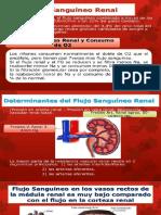 FLUJO-SANGUINEO-RENAL.pptx