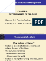 Intercultural Management (MBA) Chapter 1