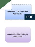 SECCION N 1 DE AUDITORIA TRIBUTARIA.docx