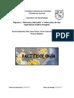 Infecciones de vías respiratorias (cultivo faríngeo)