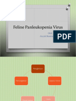 Feline Panleukopenia Virus