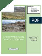 ESTUDIO AMBIENTAL DE PROYECTO  TOROMOCHO