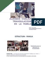 Alianzas, Coaliciones, Triangulaciones-2017