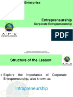 10_CorporateEntrepreneurship