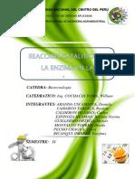 INFORME DE CUAJO.docx