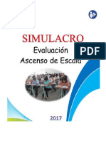 EXAMEN SIMULACRO 2017