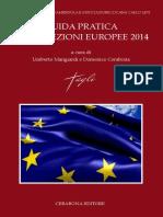 Guida Pratica Alle Elezioni Europee 2014