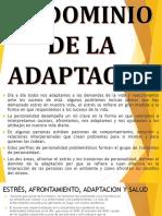 adaptacion.pptx