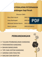 Ppt Bangper Fix