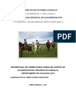 Censo Canino Pampa Cangallo
