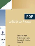 Manuel Galán Vázquez. La Gestión Por Procesos