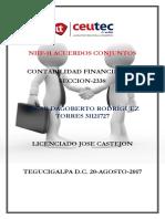 OscarRodriguez 31121727 Tarea-06 Resumen NIIF-11
