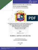 Arivilca_Huaracha_Mariela.pdf