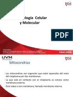 Asesoria de Biologia Celular y Molecular