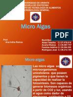 MicroAlgas [Reparado]