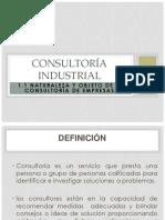 1.1-consultoría