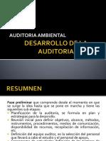 Auditoria Cepades II