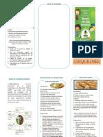 FOLLETOS BIENESTARINA 2.docx