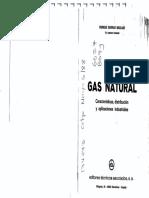 237185463-Gas-Natural-y-Sus-Aplicaciones.pdf