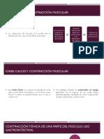 IONES CALCIO- SN ENTÉRICO MICHELLE.pptx