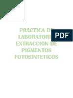 Practica de Laboratorio Extraccion de Pigmentos Fotosinteticos