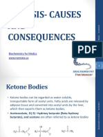 ketosis-121021024152-phpapp02 (2)