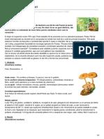 formula-as.ro-Sănătate cu ciuperci