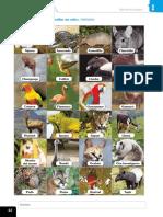 material_fotocopiable_42.pdf