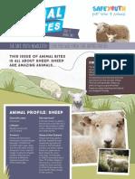 Animal Bites Newsletter #11