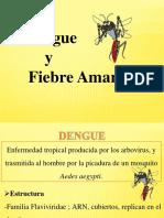 Dengue y Fiebre Amarilla (2)