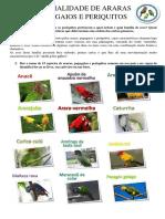 Especialidade de Araras Papagaios e Periquitos